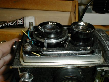 Seagull TLR